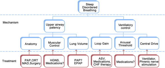 relationship between congestive heart failure and sleep apnea
